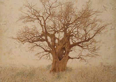 Mon arbre dans un siècle  (coll.part.)