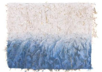 Nîlgîri - montagnes bleues (coll.part)