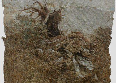 Un arbre encore sous l'écorce (coll.part.)