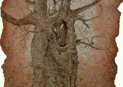 Baobab Nathalie (coll.part.)