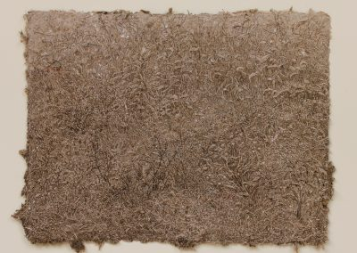 Herbes sans frontières (coll.part.)